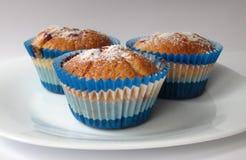 Muffins met bessen Royalty-vrije Stock Afbeelding