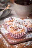 muffins met havermeel en okkernoten Royalty-vrije Stock Fotografie