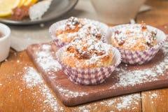 muffins met havermeel en okkernoten Royalty-vrije Stock Foto's