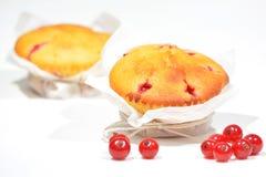 Muffins met rode aalbessen royalty-vrije stock afbeeldingen