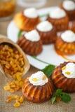 Muffins met roomkaas en rozijnen Royalty-vrije Stock Afbeelding