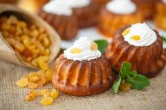 Muffins met roomkaas en rozijnen Stock Afbeeldingen