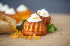 Muffins met roomkaas en rozijnen Royalty-vrije Stock Foto's