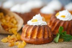 Muffins met roomkaas en rozijnen Stock Fotografie