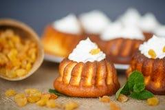 Muffins met roomkaas en rozijnen Stock Foto's