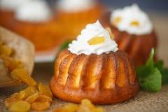 Muffins met roomkaas en rozijnen Royalty-vrije Stock Afbeeldingen