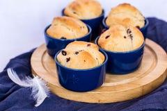 Muffins met rozijnen in ronde vormen stock afbeeldingen