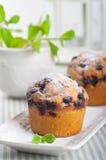 Muffins met zwarte bes royalty-vrije stock afbeeldingen