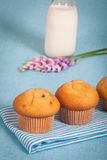 Muffins and milk Royalty Free Stock Photos