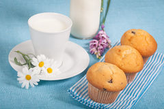 Muffins and milk Stock Photography