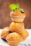 Muffins with mint. Some fresh hot muffins with green mint in studio Royalty Free Stock Photography
