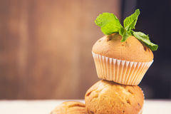 Muffins with mint. Some fresh hot muffins with green mint in studio Stock Photo