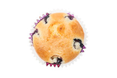 Muffins mit Blaubeer- und der Aprikosenobenliegendem Trieb lizenzfreie stockbilder