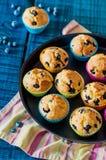 Muffins mit Blaubeeren Stockbilder