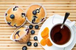 Muffins mit Blaubeeren- und Aprikosen obenliegendem sho lizenzfreie stockfotos