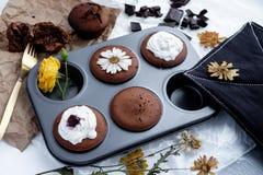 Muffins mit dunkler Schokolade Lizenzfreies Stockfoto