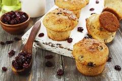 Muffins mit getrockneten Moosbeeren stockbilder