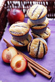 Muffins mit Pflaumen Stockbild