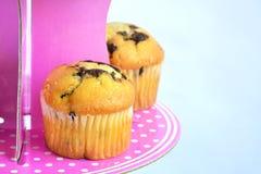 Muffins mit Schokolade auf dem Stand stockbilder