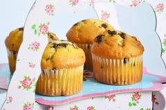 Muffins mit Schokolade auf dem Stand lizenzfreie stockfotografie