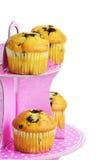 Muffins mit Schokolade auf dem Stand lizenzfreies stockbild