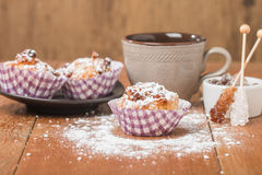 Muffins with oatmeal and walnuts Stock Images