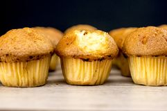 Muffins out of oven Royalty Free Stock Image