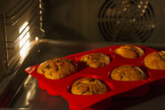 Muffins in oven Royalty Free Stock Photography