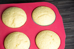 Muffins. Photo of some homemade muffins Stock Image