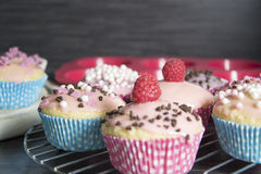 Muffins. Photo of some homemade muffins royalty free stock photos