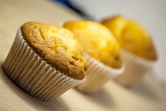 Muffins on plate Stock Photography