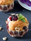 Muffins with plums Royalty Free Stock Photos