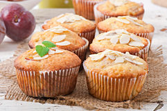 Muffins with plums Stock Image