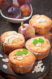 Muffins with plums Royalty Free Stock Image