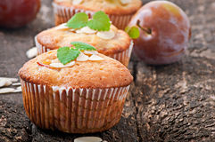 Muffins with plums Stock Photos