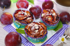 Muffins with plums and almonds Royalty Free Stock Photography