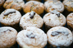 Muffins with Powder Sugar & Jelly. A close-up of muffins with powdered sugar and jelly on top some with chocolate swirls royalty free stock photo