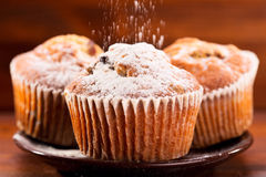 Muffins with powdered sugar. On wooden table stock photography