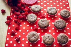 Muffins with raspberries Stock Images