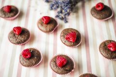 Muffins with raspberries Royalty Free Stock Photos