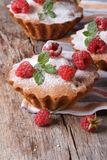 Muffins with raspberries, powdered with sugar vertical Stock Image