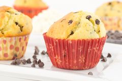 Muffins with ricotta cheese and chocolate chips Royalty Free Stock Photography