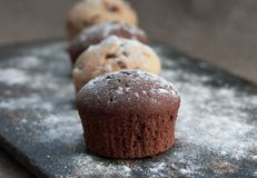 Muffins on rustic bakery peel. Four chocolate and vanilla muffin on rustic bakery peel with sugar powder Stock Image