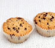 Muffins. Some fresh muffins with chocolate Royalty Free Stock Photo