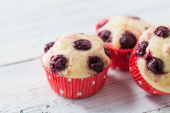 Muffins. Sour Cherry Muffins,  made with fresh cherries Royalty Free Stock Images
