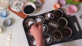 Muffins sprinkle with powdered sugar. In room stock video
