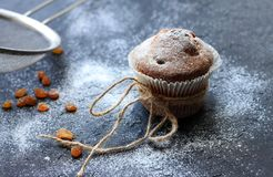 Muffins sprinkled with the powder sugar on black background. Muffins sprinkled with the powder sugar and raisins on black background royalty free stock image