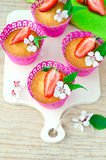 Muffins with strawberries Stock Images