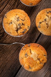 Muffins. Royalty Free Stock Image