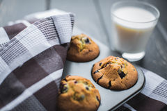 Muffins in a tray lying at wooden table Stock Photography